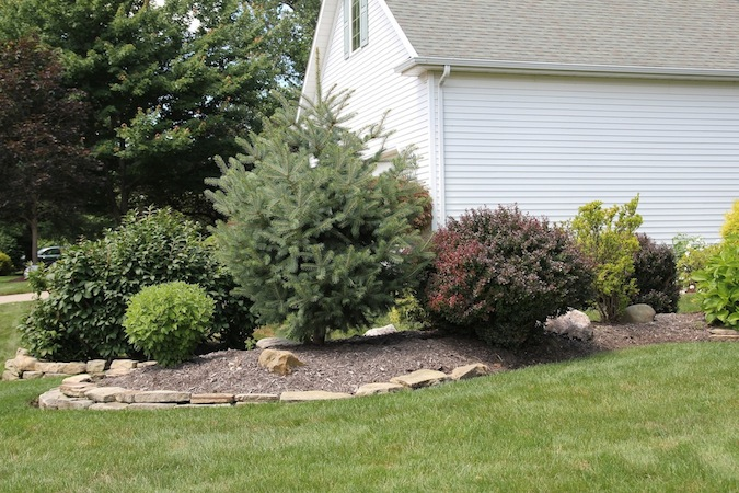 Home with replanted grass, flowerbeds, front flower beds, and other plants